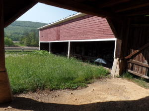 Additional photo for property listing at 847 EAGLE VALLEY ROAD  Beech Creek, Pennsylvania 16822 United States