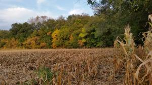 Land for Sale at 777 8TH AVENUE Lebanon, Pennsylvania 17046 United States