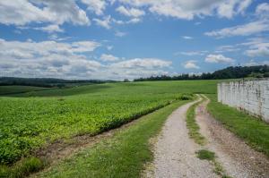 Additional photo for property listing at 3784 LAUREL LANE  Glen Rock, Pennsylvania 17327 Estados Unidos