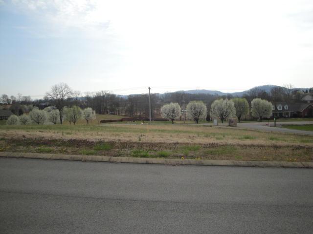 Lot 4 Pocahontas Lane, Rutledge, Tennessee 37861, ,Lots & Acreage,For Sale,Pocahontas,886205