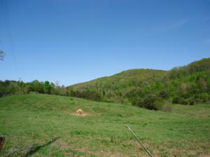 Jim Davis Rd, Tellico Plains, TN 37385