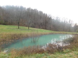 Jones Ridge Rd, Speedwell, TN 37870