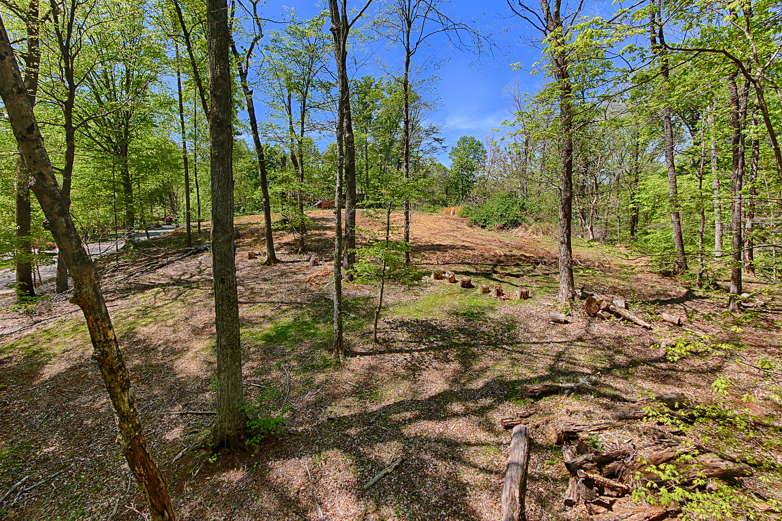 5340 Hickory Hollow Rd: