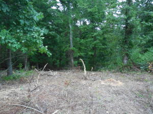 Photo for New Hope Rd. Lot 230 Lot 230