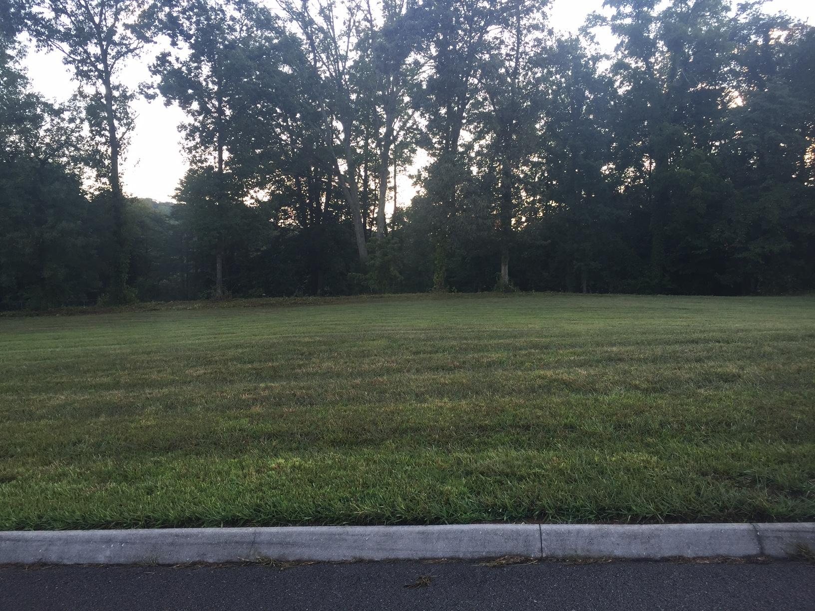 Clydesdale Ave, Seymour, Tennessee, United States 37865, ,Lots & Acreage,For Sale,Clydesdale Ave,973833