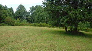 23 Ac Brown Cemetery Lane, Gainesboro, TN 38562