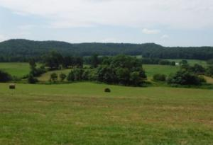 97.71 Ac. Hollis Stockton Road, Livingston, TN 38570