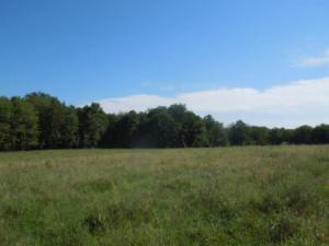 31.84 Ac. Bill White Lane, Livingston, TN 38570