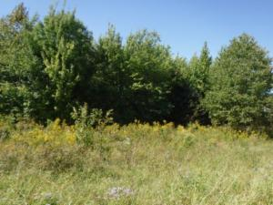 Lot 1,2 Airport Road, Livingston, TN 38570