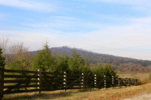 299 Acres Glenobey Rd, Jamestown, TN 38556