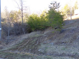 Photo for Lots 76-78 Hollow Springs Way Lot 76-78