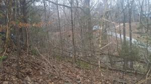 .95 Acres East Port Road, Alpine, TN 38543