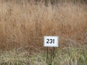 Photo for New Hope Lot 231 RdLot 231
