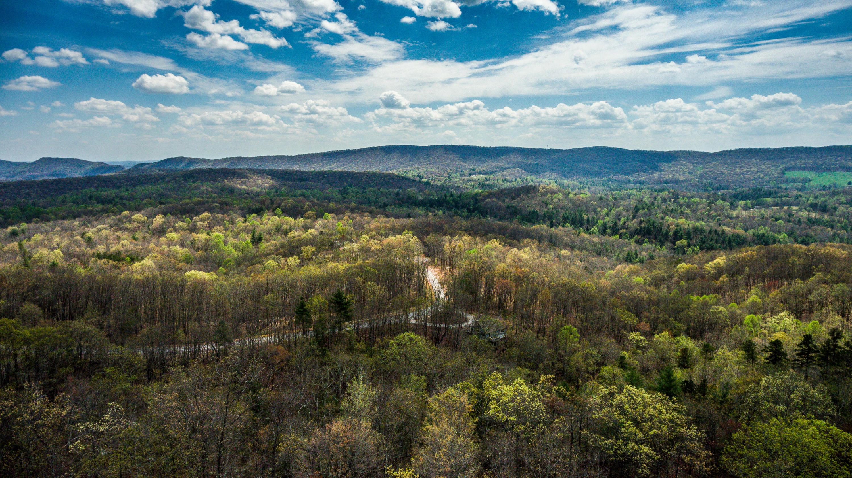 Green Ridge Trail - Lot #40, Harriman, Tennessee 37748, ,Lots & Acreage,For Sale,Green Ridge Trail - Lot #40,941829