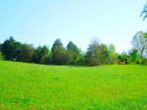 .86 Ac Fox Trace Lane, Livingston, TN 38570