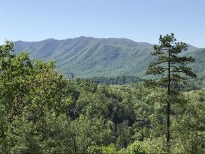 Photo for 424 Mt John Loop RdLot 42r