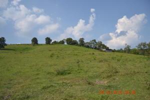 Photo for Hogskin Valley Rd