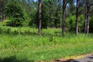 8.07 Acres County Road 41, Calhoun, TN 37309
