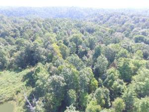 22.73 Ac. South Fork Road, Whitleyville, TN 38588