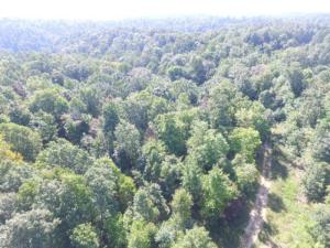 22.72 Ac. South Fork Road, Whitleyville, TN 38588
