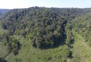 15.77 Ac. South Fork Road, Whitleyville, TN 38588