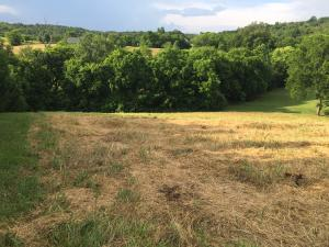 Photo for Lot 35 Marble Bluff DriveLot 35