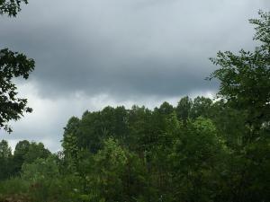 Old Stephens Rd, Jamestown, TN 38556