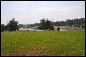 Photo for 2309 Hwy 411