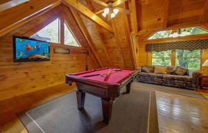 1924 COUGAR CROSSING WAY, SEVIERVILLE, TN 37876  Photo 7