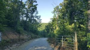 Jones Ridge Rd Rd, Speedwell, TN 37870
