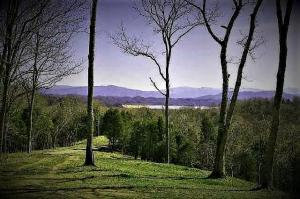 Nina Hills Drive, White Pine, TN 37890