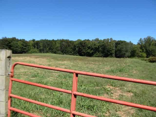 Co Rd 401, Madisonville, Tennessee 37354, ,Lots & Acreage,For Sale,Co Rd 401,1018024