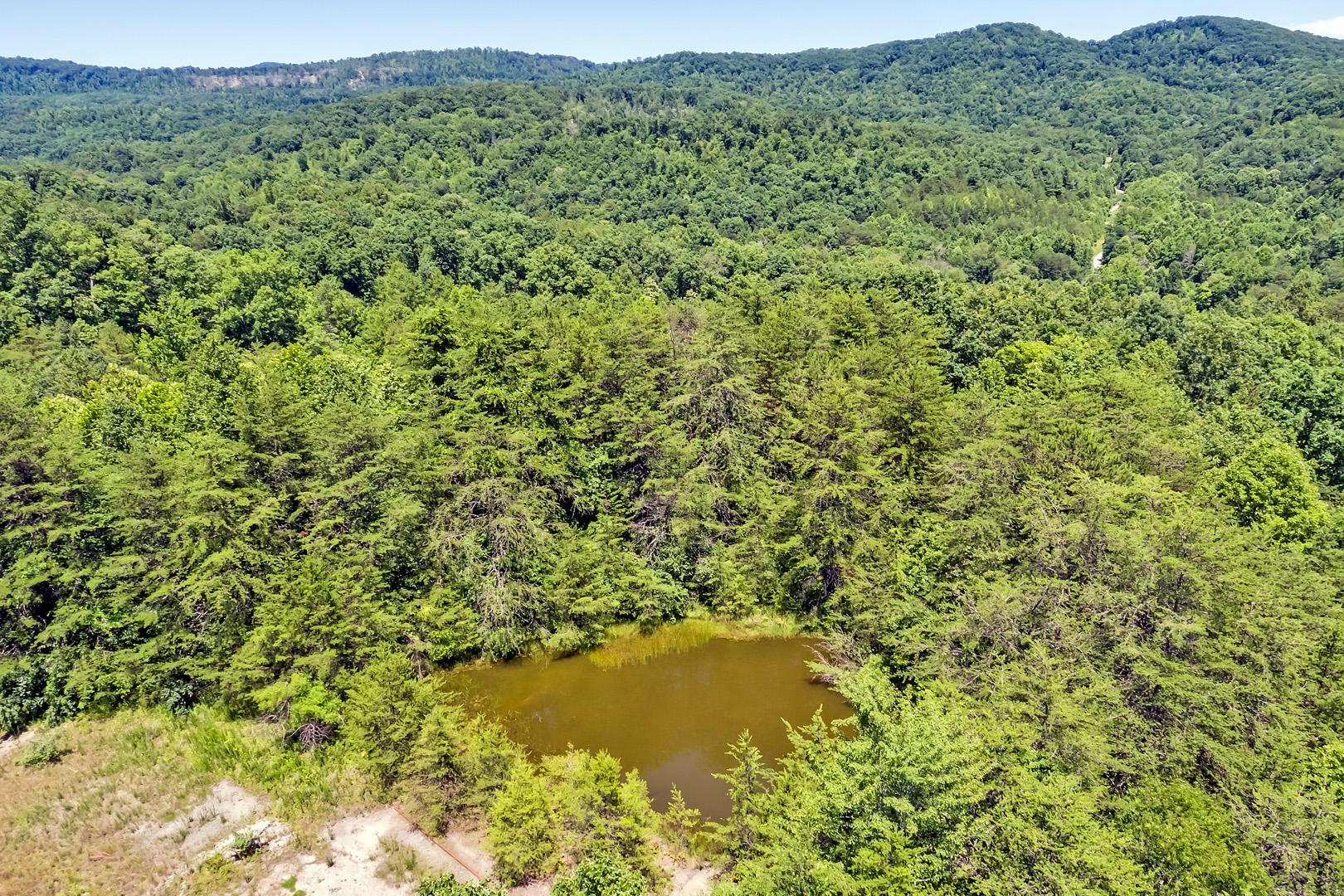 Creek, Oneida, Tennessee, United States 37841, ,Lots & Acreage,For Sale,Creek,1018436