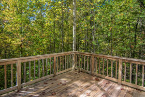 1804 SPRING HILL DRIVE, SEVIERVILLE, TN 37876  Photo 18