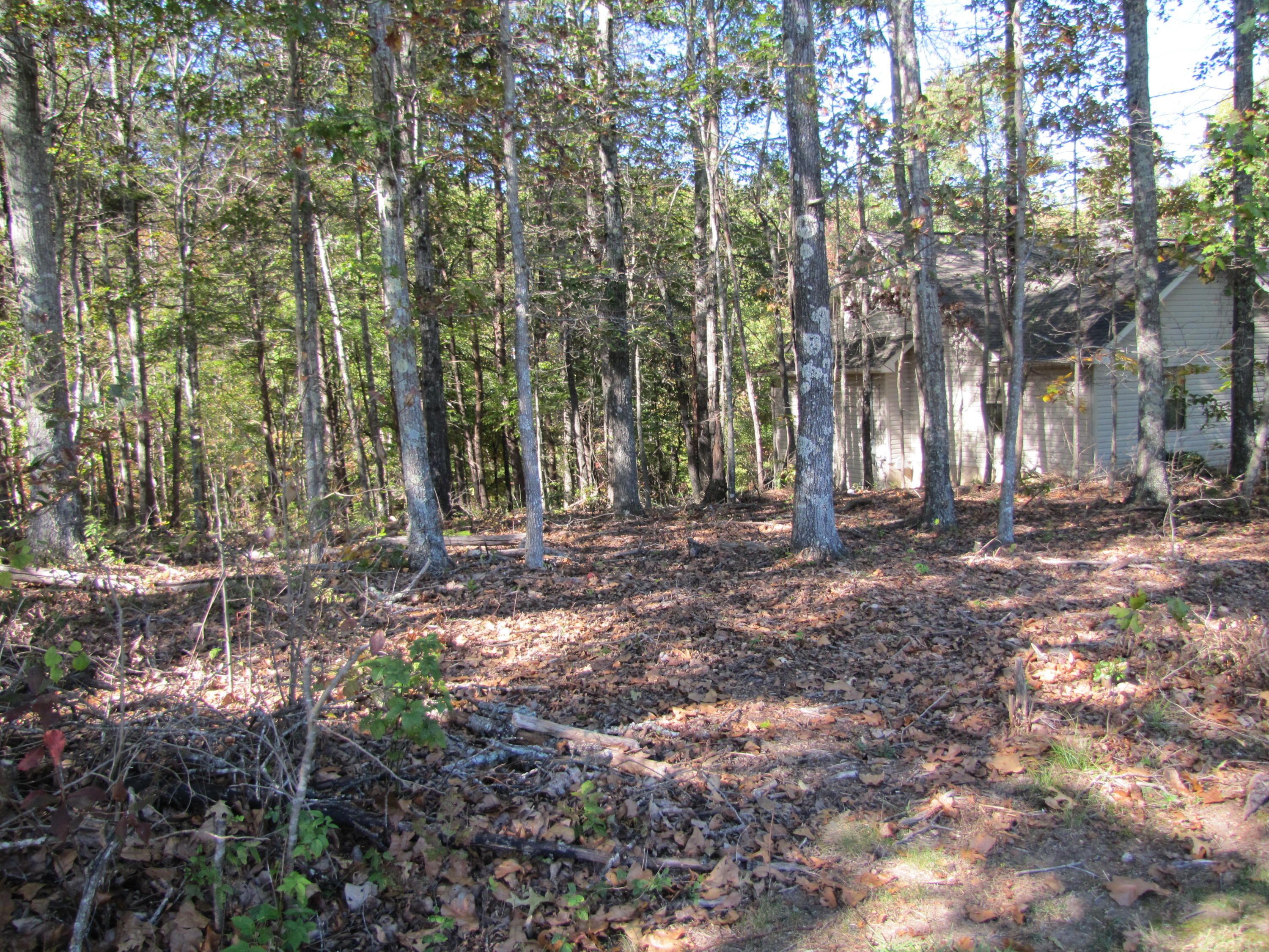 16 Berkeley Square, Fairfield Glade, Tennessee 38558, ,Lots & Acreage,For Sale,Berkeley Square,1020475