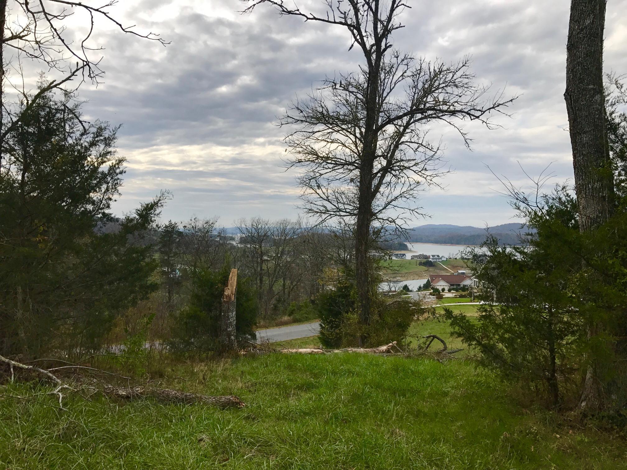 Lot 335a Larayne Hollow Rd: