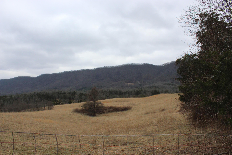 Davidson/Dalton Ridge Rd, Thorn Hill, Tennessee 37881, ,Lots & Acreage,For Sale,Davidson/Dalton Ridge,1028851