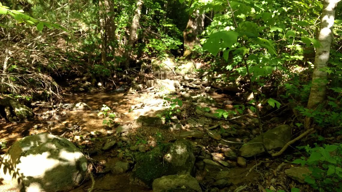 1970 Carrs Creek Rd, Townsend, Tennessee 37882, ,Lots & Acreage,For Sale,Carrs Creek,1029061