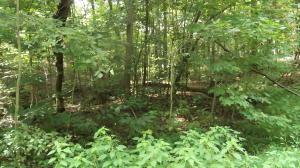 Photo for Lot 2088 Deer Creek TrLot 2088