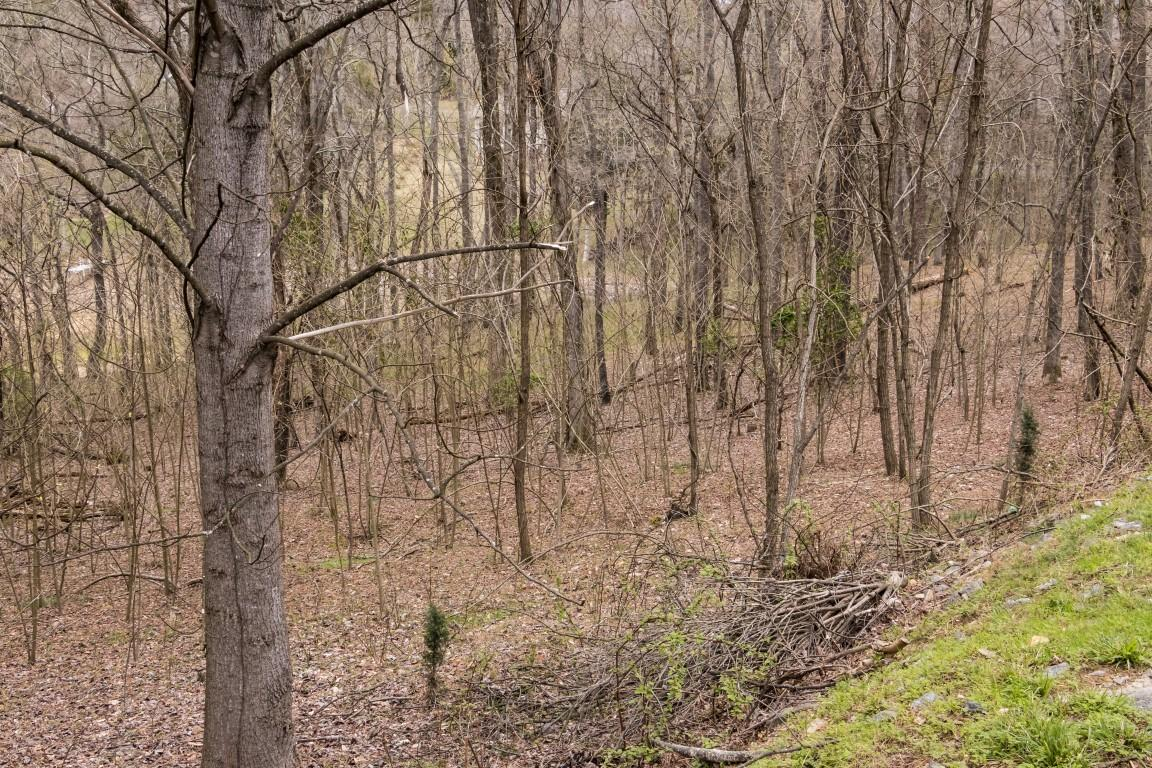 408 Chelaque, Mooresburg, Tennessee, United States 37811, ,Lots & Acreage,For Sale,Chelaque,1034592