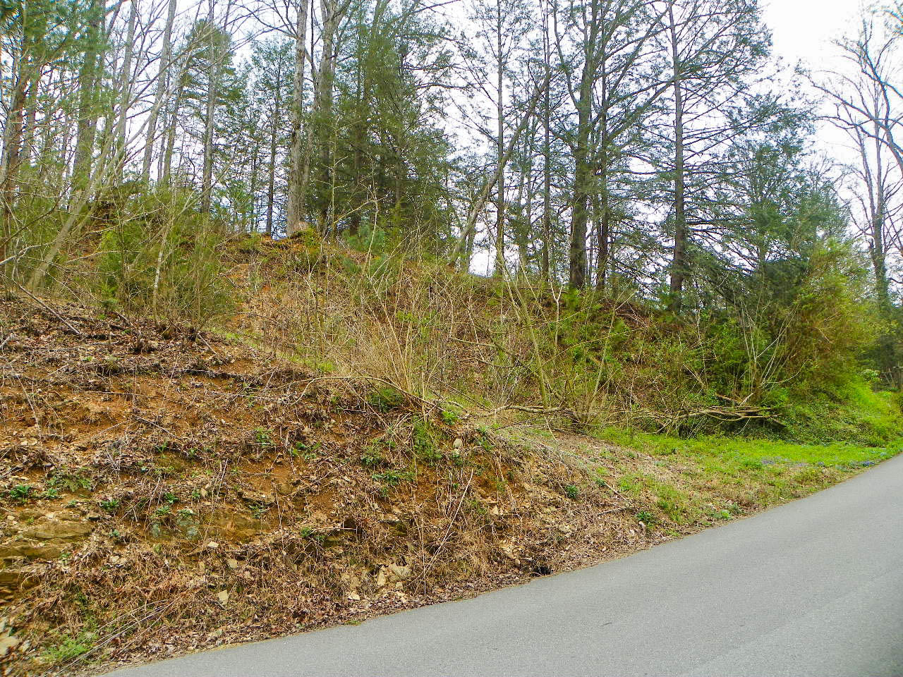 Lot# 1 Shady Grove Road, Sevierville, Tennessee 37876, ,Lots & Acreage,For Sale,Shady Grove Road,1036478