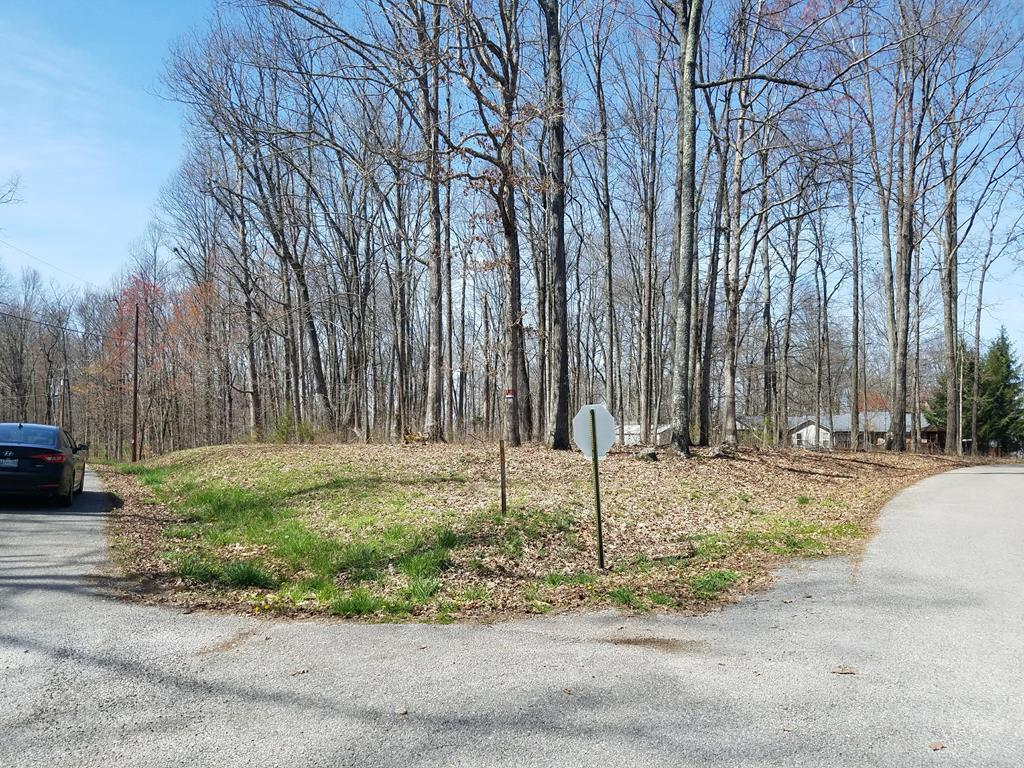 Sparta, Tennessee 38583, ,Lots & Acreage,For Sale,1036846