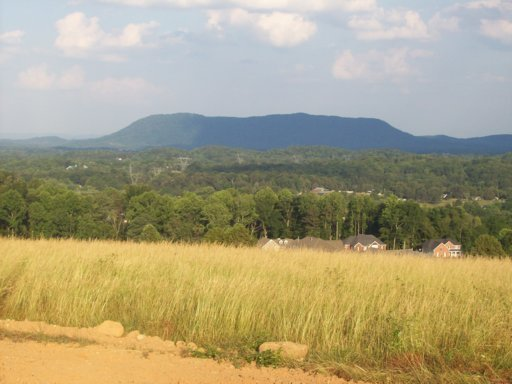 8322 Campbells Point Rd, Corryton, Tennessee 37721, ,Lots & Acreage,For Sale,Campbells Point,1037144