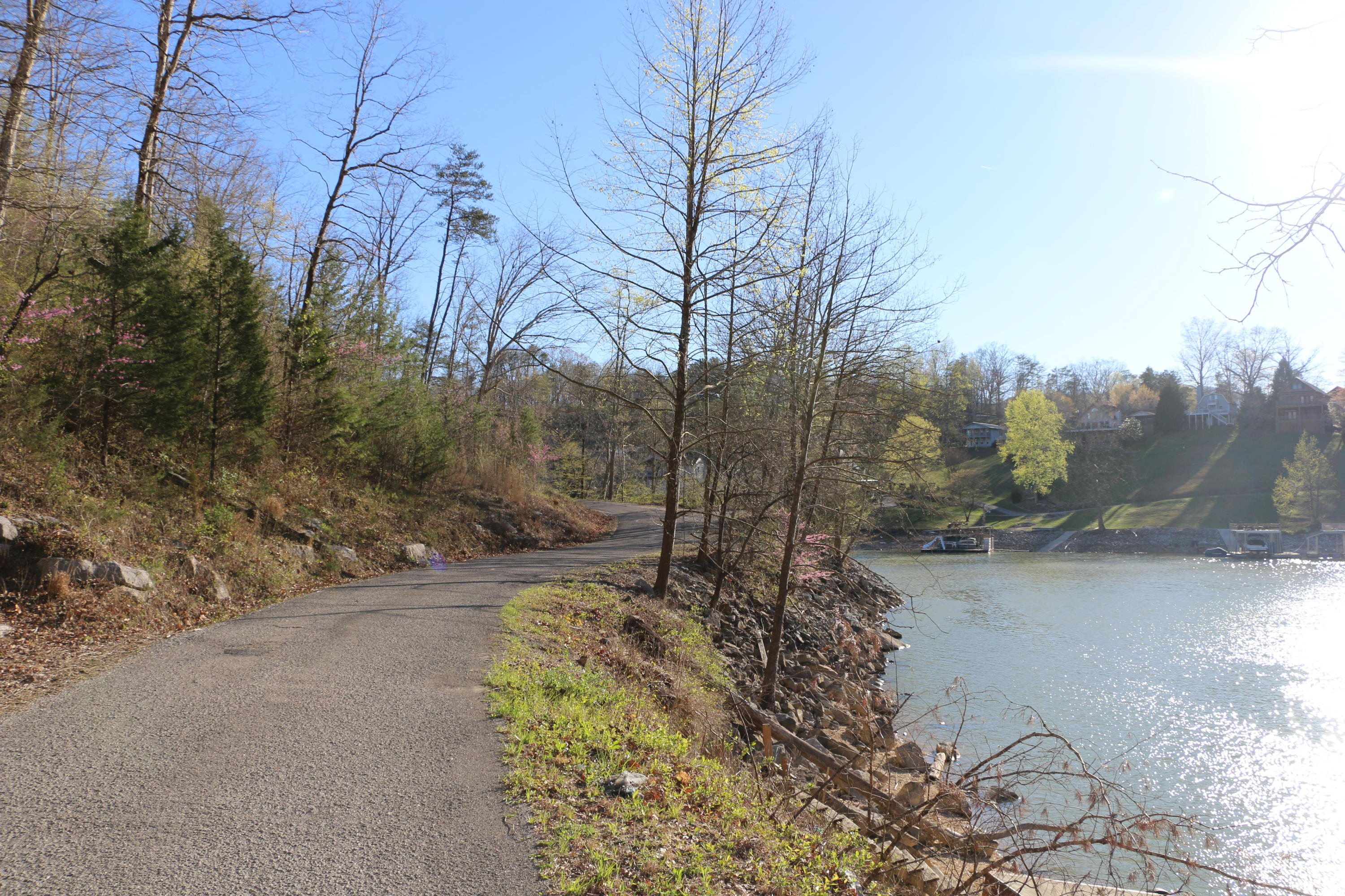 View Of The Lake Drive: