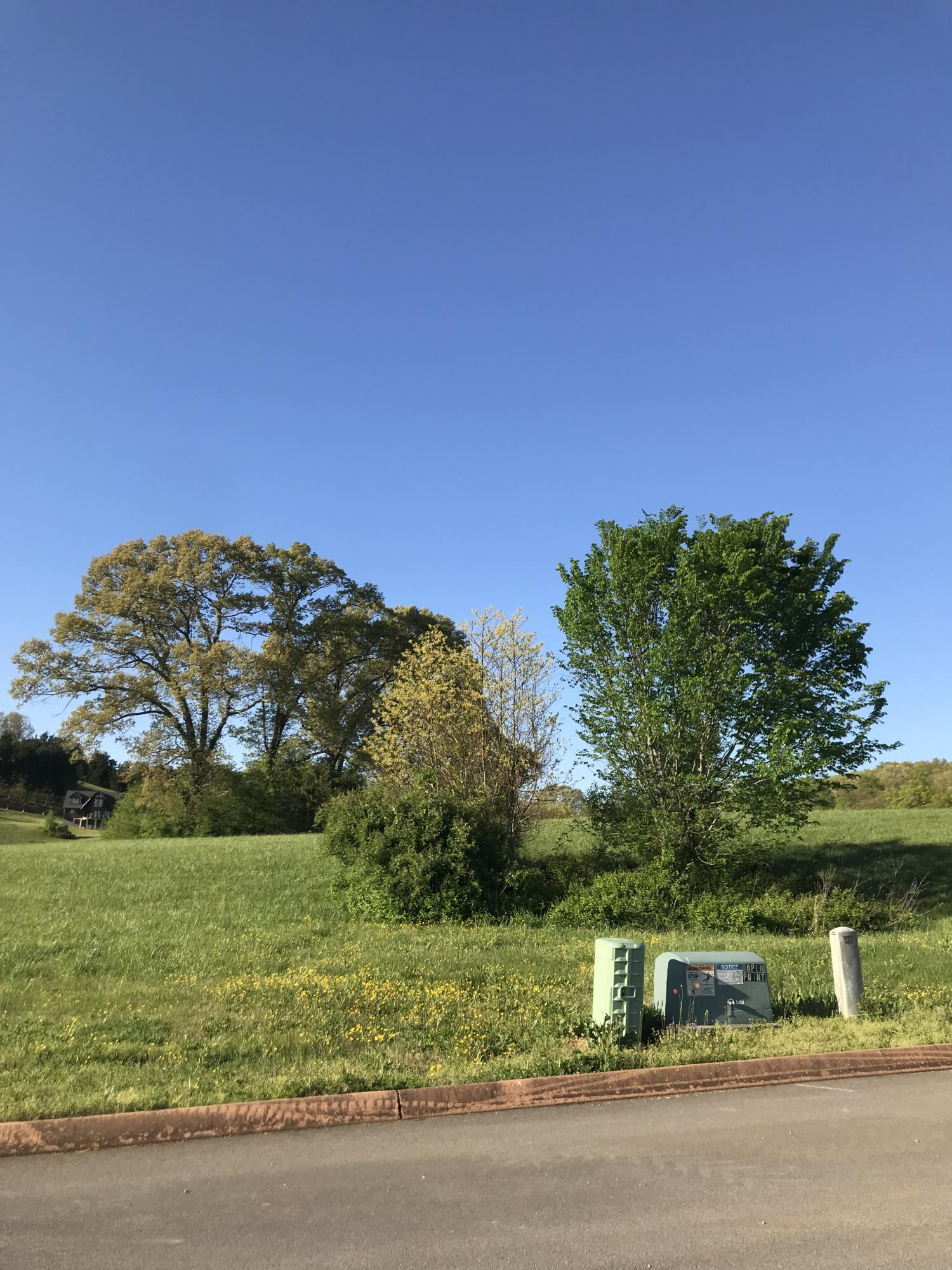 Lot 87 Shiloh Springs, Rutledge, Tennessee 37861, ,Lots & Acreage,For Sale,Shiloh Springs,1051100