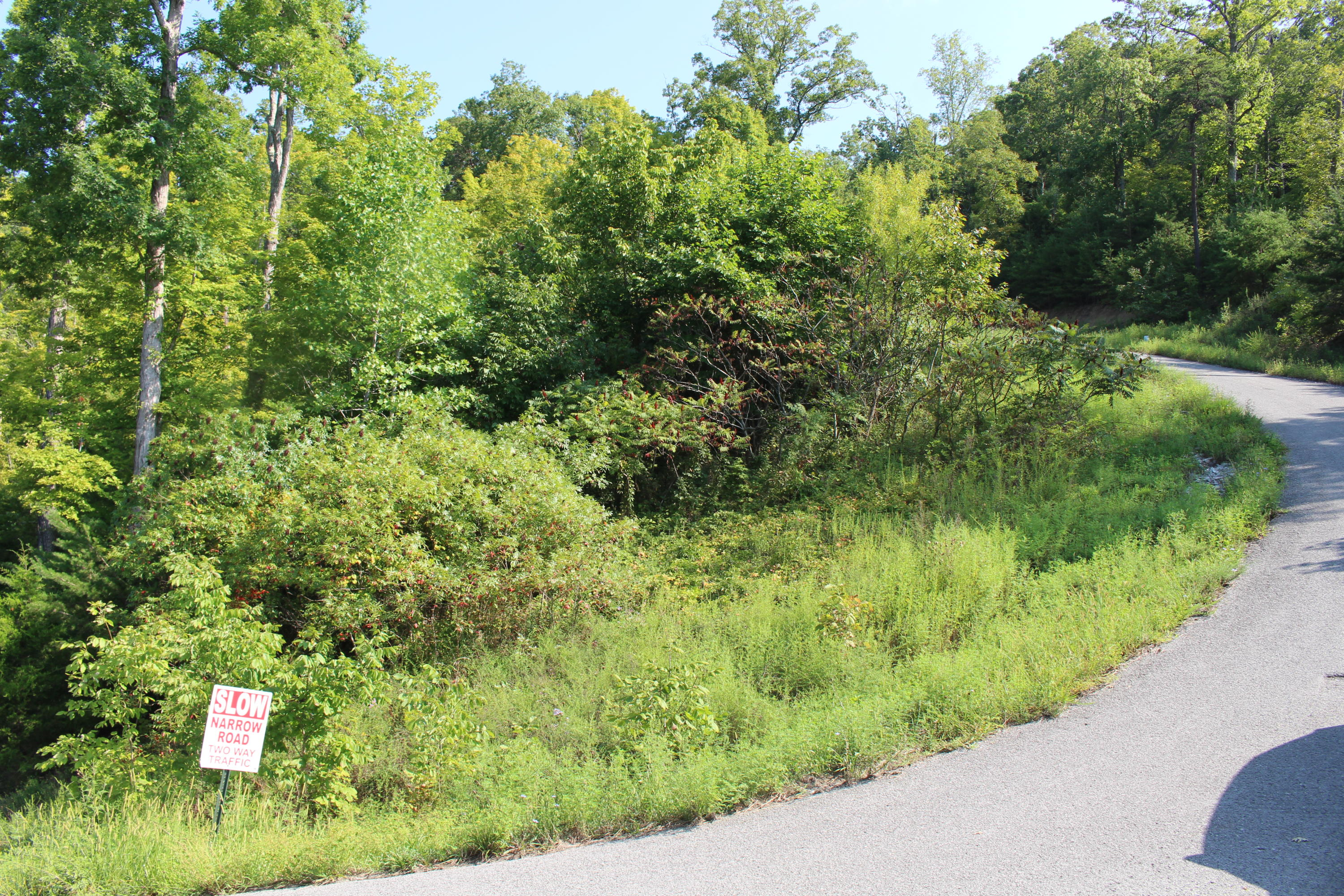 Lot 799 Russell Brothers Rd: