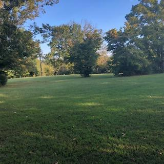 9115 Ruggles Ferry Pike, Strawberry Plains, Tennessee 37871, ,Lots & Acreage,For Sale,Ruggles Ferry,1055086