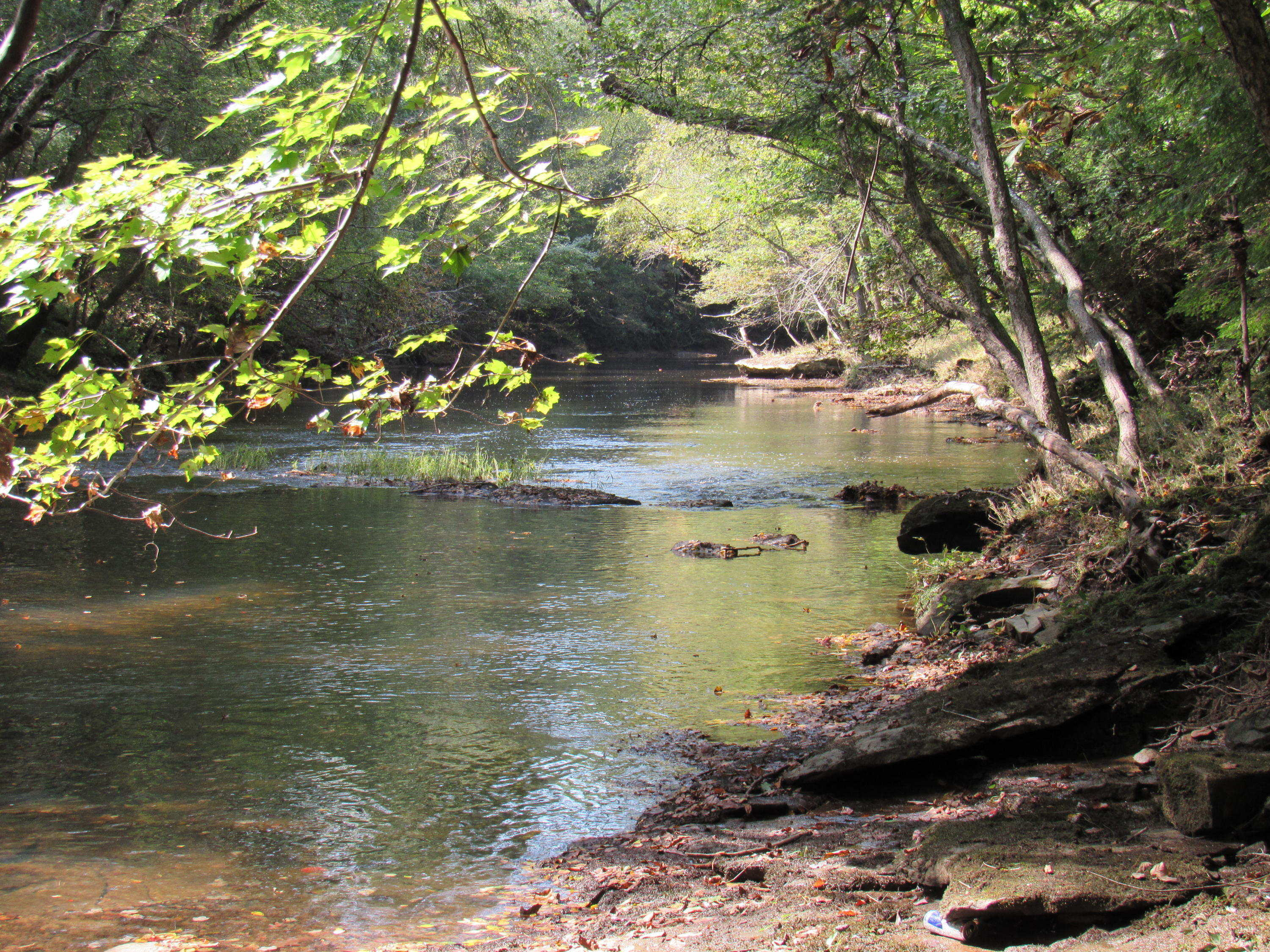 Nydeck Rd- Robbins- Tennessee 37852, ,Lots & Acreage,For Sale,Nydeck,1054497