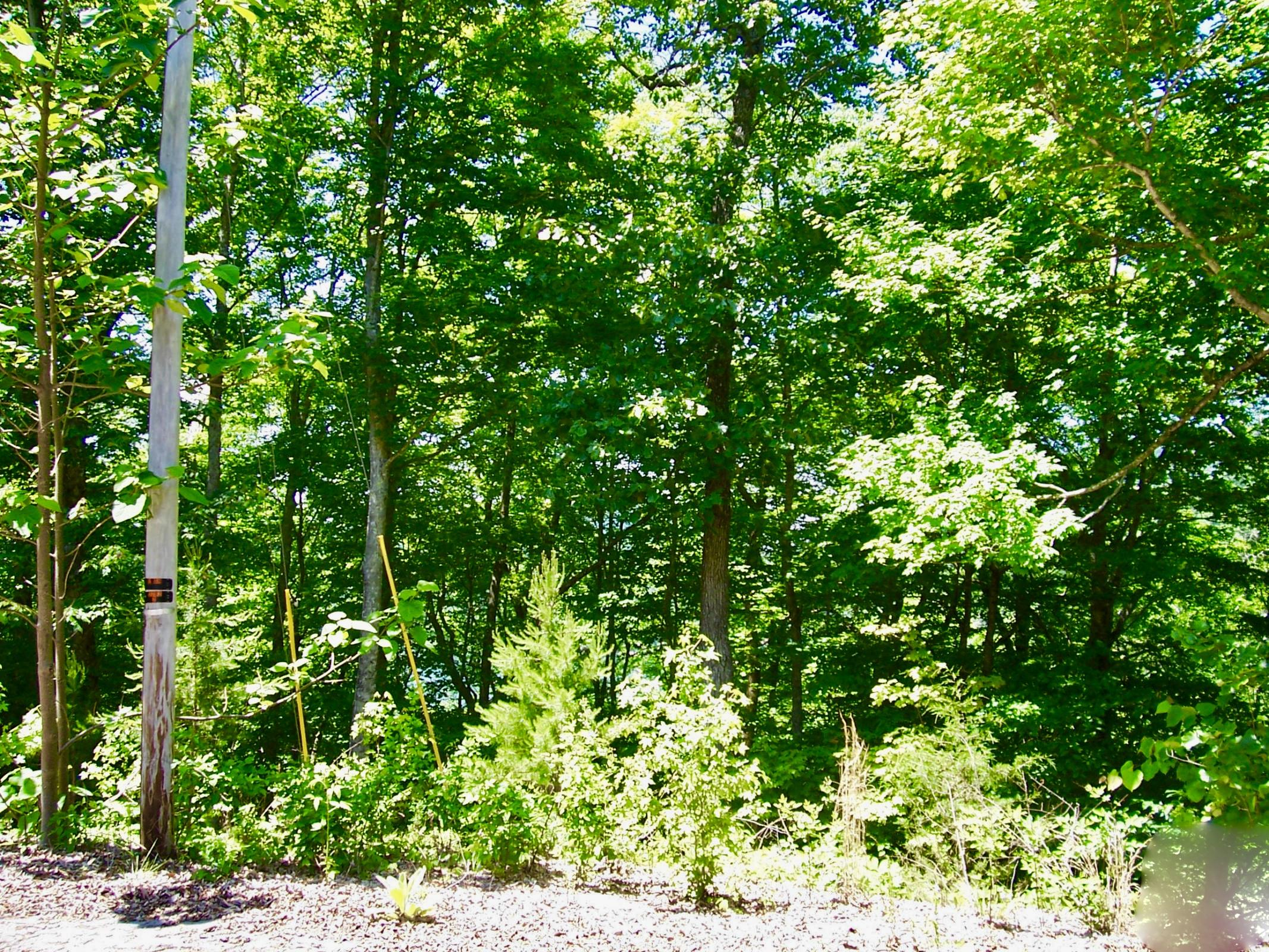 Lot 831 Jacks Bluff Rd: