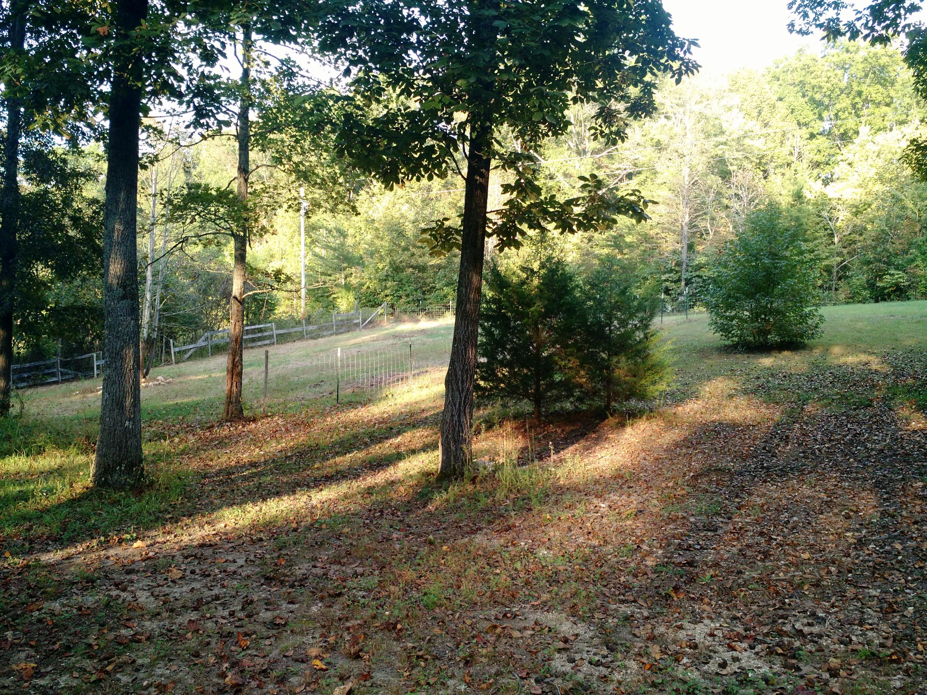 365 Evans Rd, Kingston, Tennessee 37763, ,Lots & Acreage,For Sale,Evans,1061106